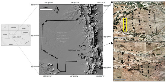 Fine-Resolution Repeat Topographic Surveying of Dryland Landscapes Using UAS-Based Structure-from-Motion Photogrammetry: Assessing Accuracy and Precision against Traditional Ground-Based Erosion Measurements