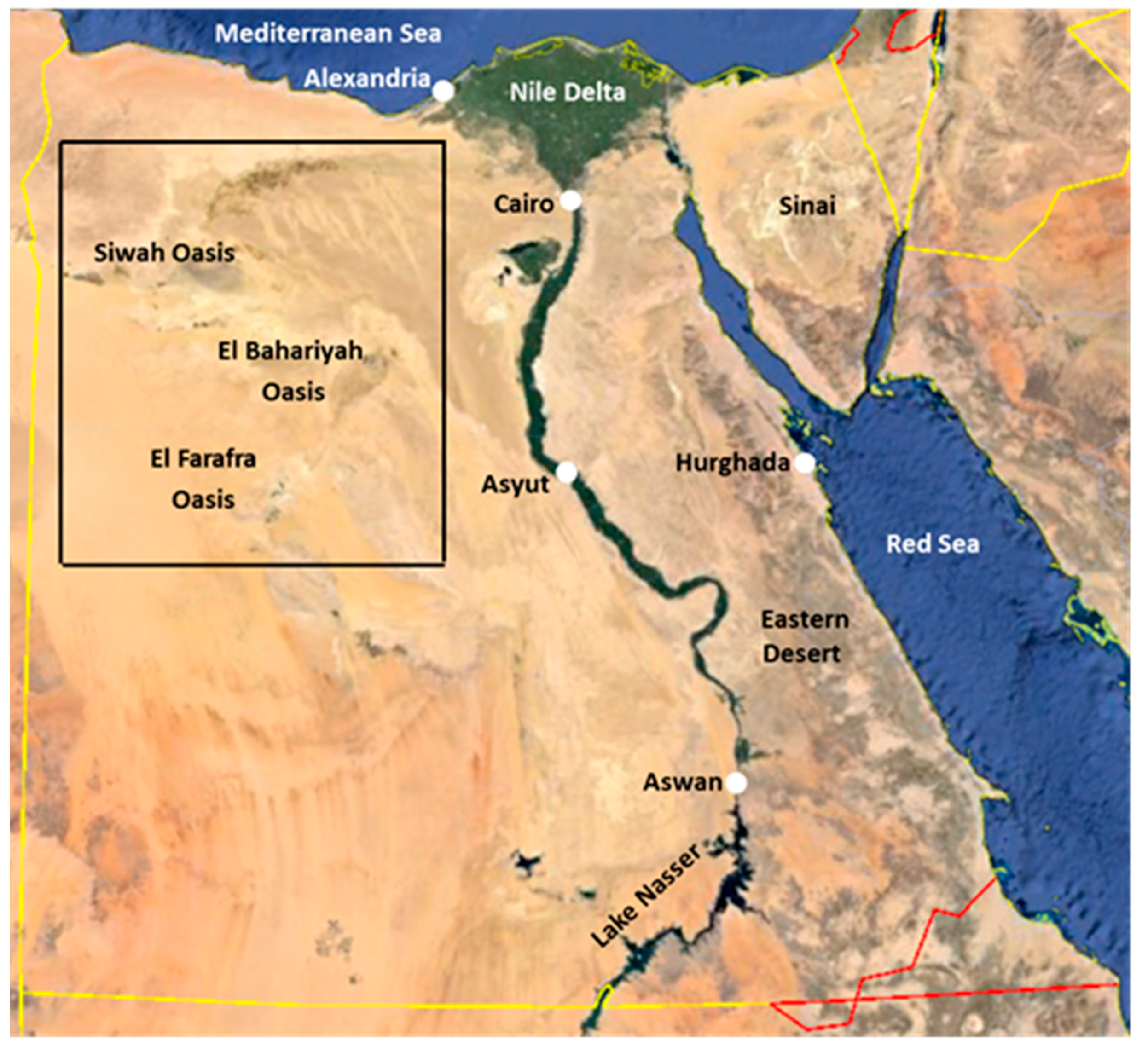 Remote Sensing Free FullText LongTerm HighResolution - Map of egypt high resolution