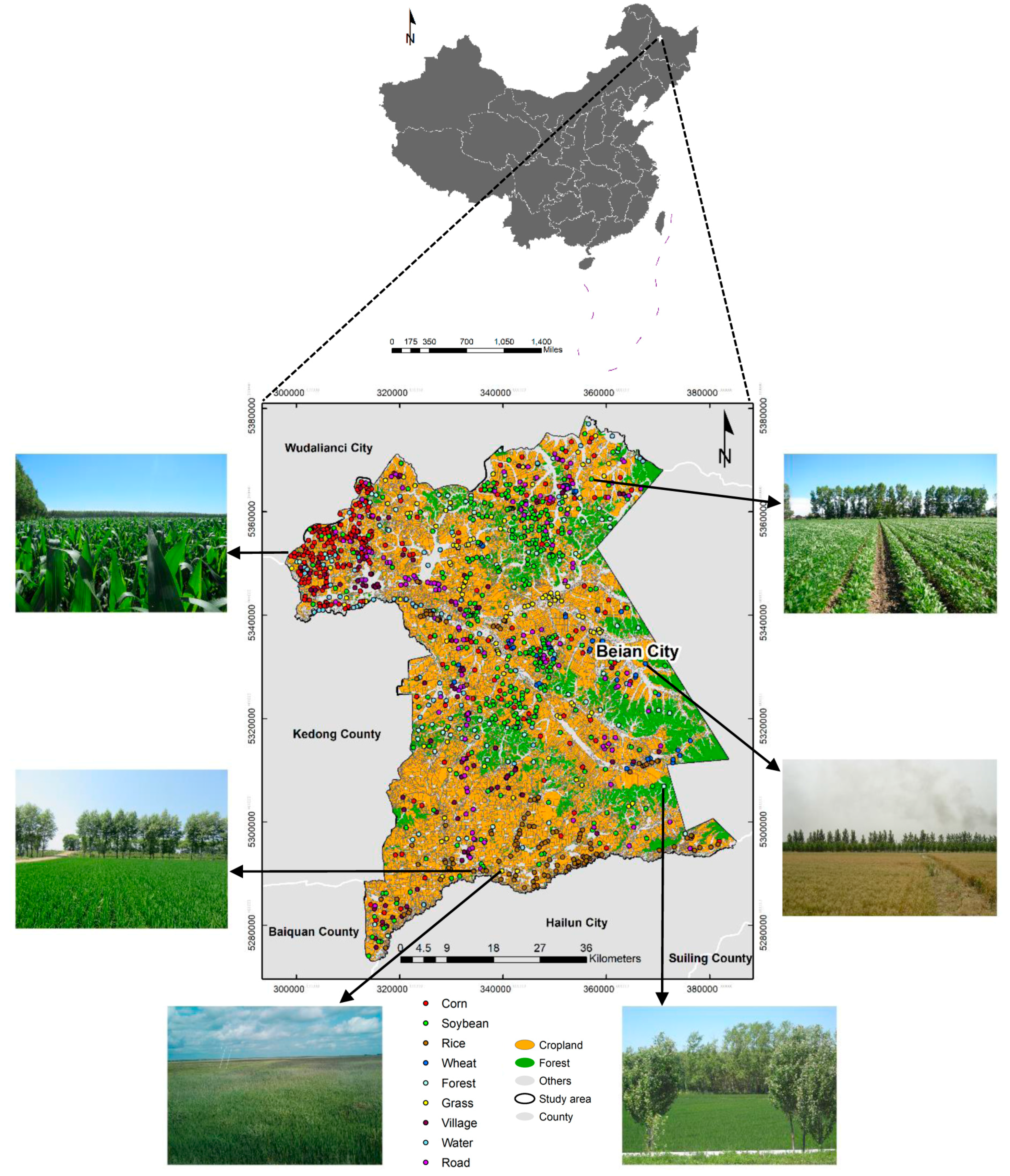 Remote Sensing | Free Full-Text | In-Season Crop Mapping