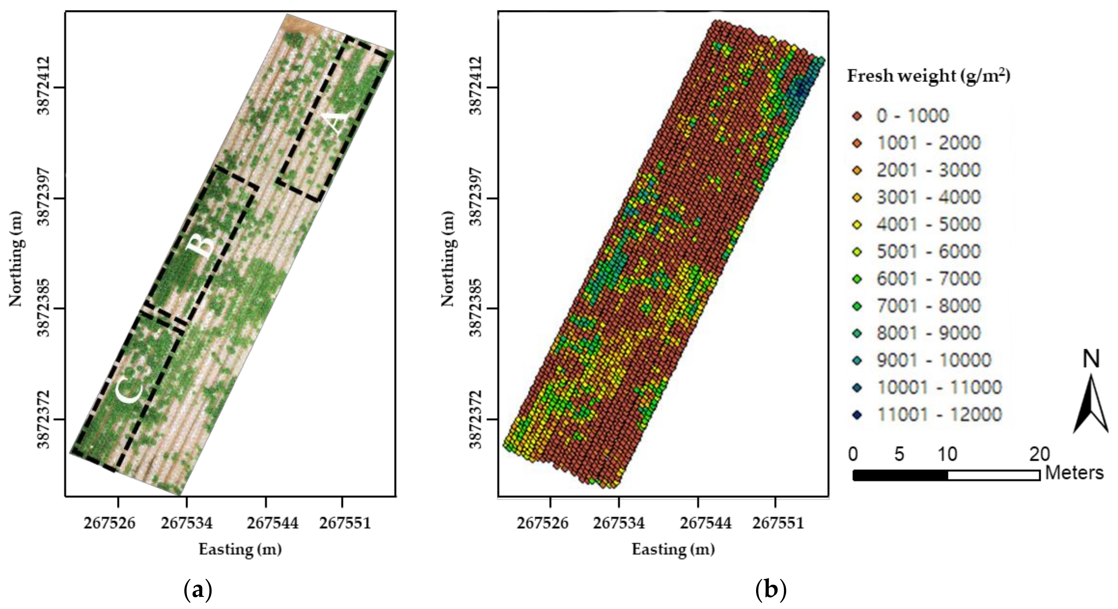Remote Sensing | Free Full-Text | Modeling and Testing of