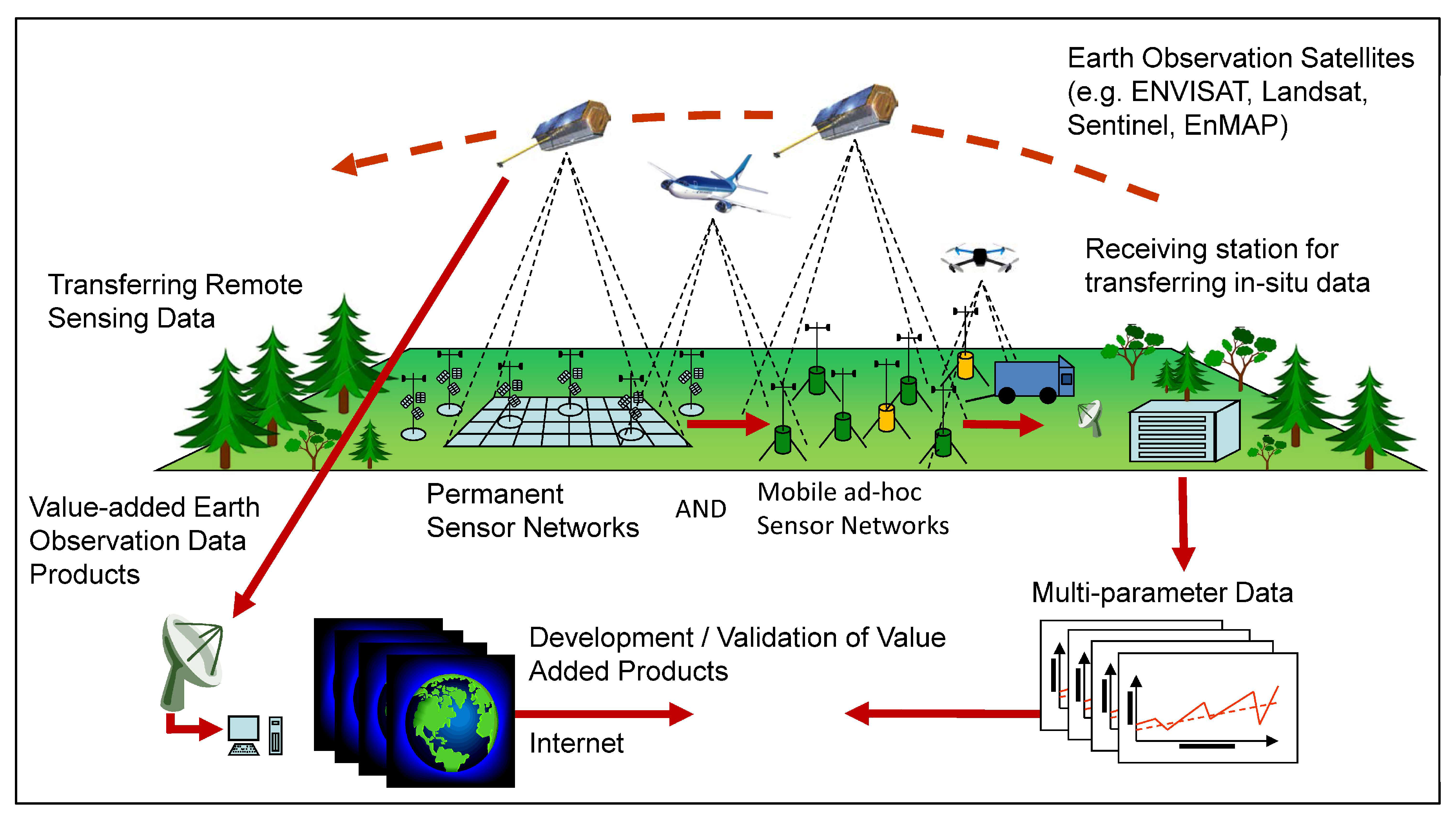Remote Sensing | Free Full-Text | Understanding Forest