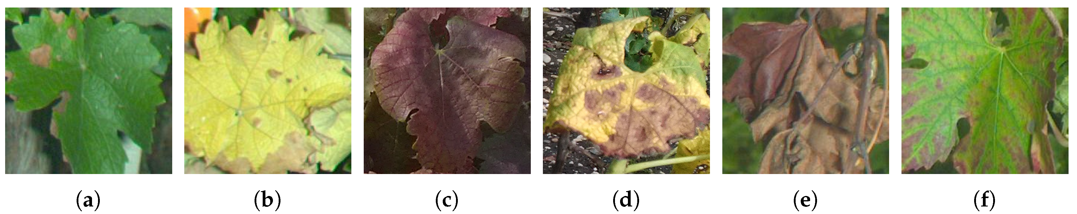 Remote Sensing   Free Full-Text   Comparison of SIFT Encoded