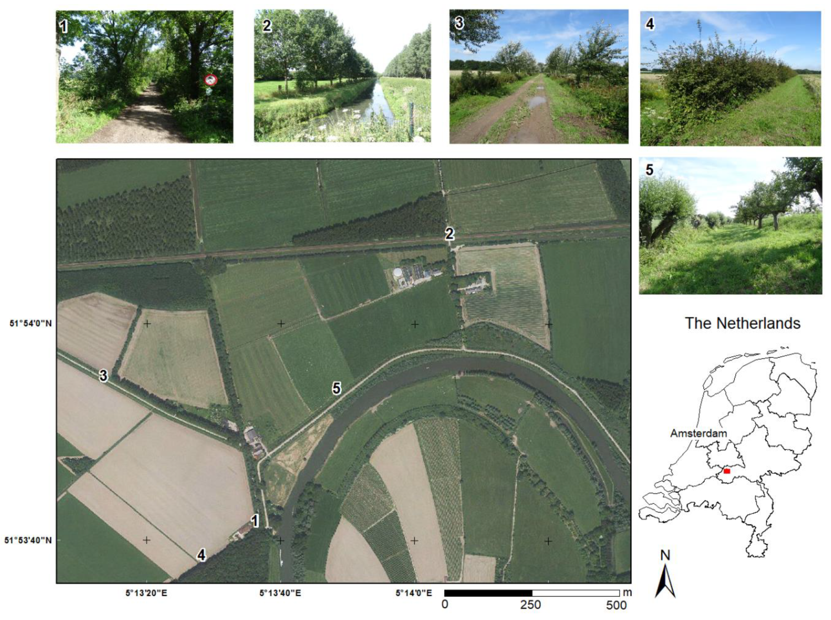 Remote Sensing Free Full Text Identification Of Linear