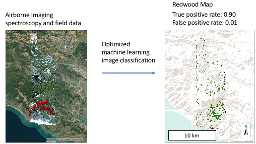 Remote Sensing | Free Full-Text | High-Resolution Mapping of Redwood