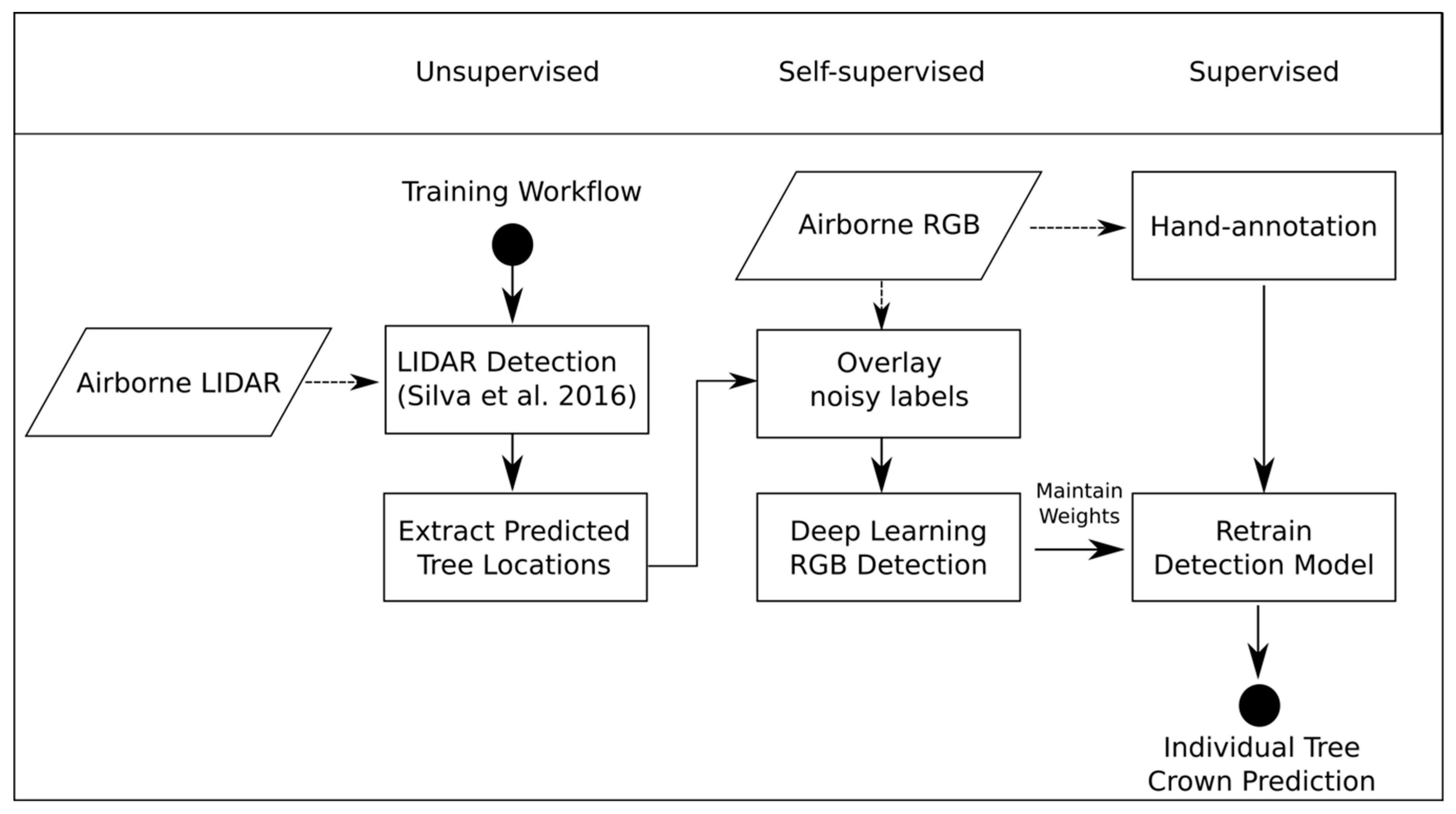 Remote Sensing   Free Full-Text   Individual Tree-Crown