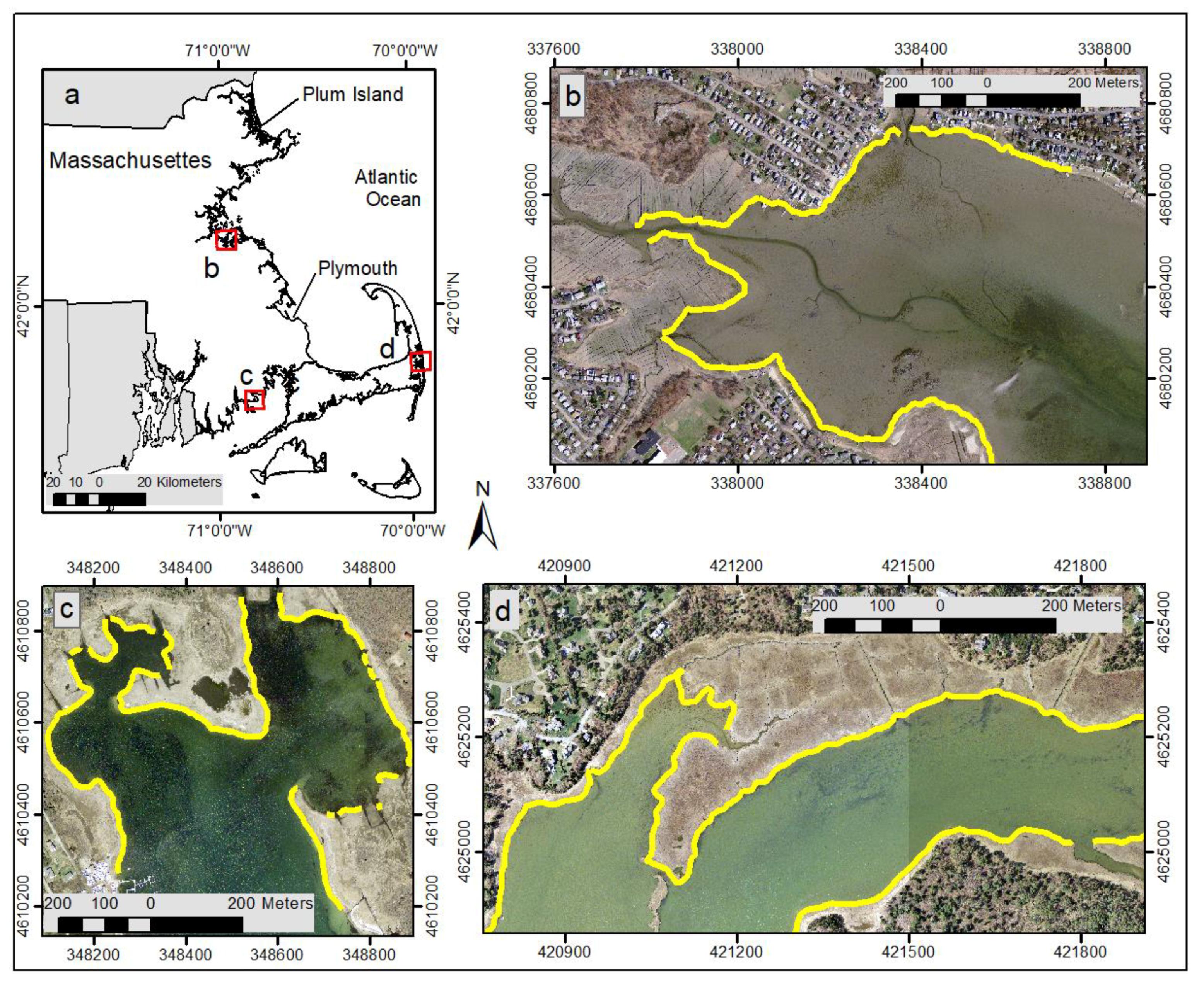Remote Sensing | Free Full-Text | Identifying Salt Marsh
