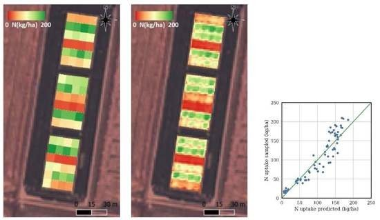 Modeling Mid-Season Rice Nitrogen Uptake Using Multispectral Satellite Data