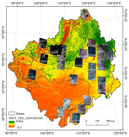 Remote Sensing | Special Issue : Advances of Multi-Temporal