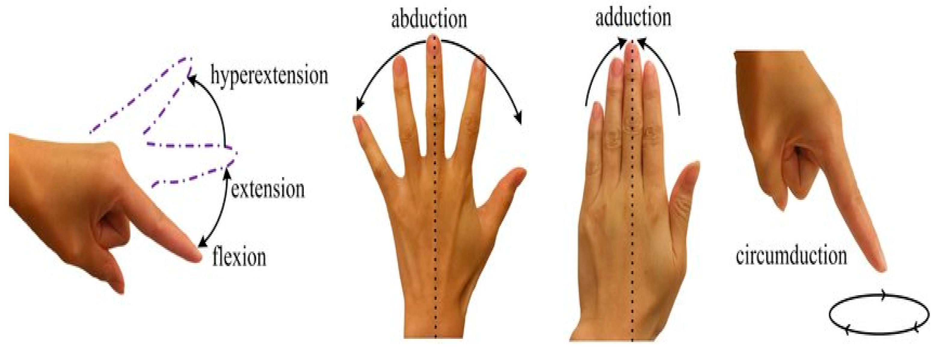 Fine Motor Hand Recovery - cover