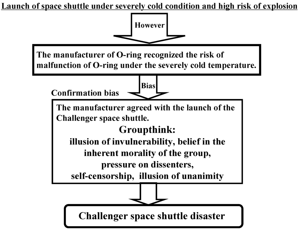 space shuttle challenger risk analysis - photo #3