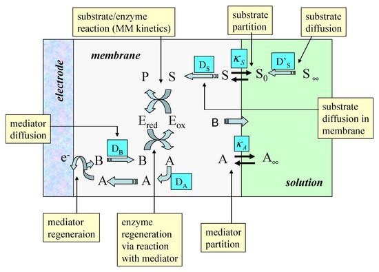 Mediated Electron Transfer at Redox Active Monolayers. Part 4: Kinetics of Redox Enzymes Coupled With Electron Mediators