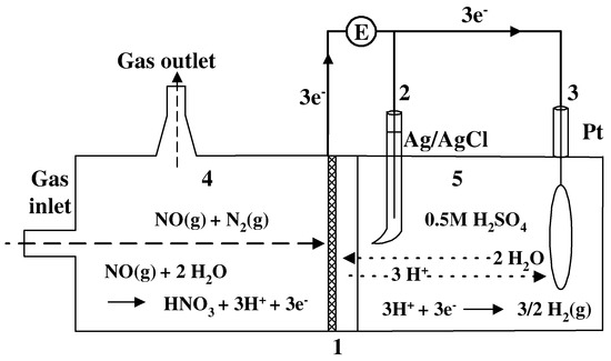 On the Electrooxidation and Amperometric Detection of NO Gas at the Pt-Nafion® Electrode