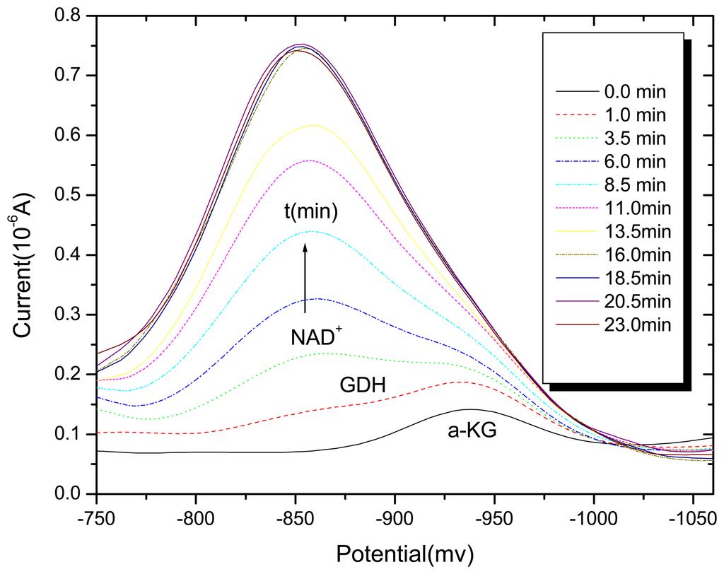 A Polarographic Study of Chlorogenic Acid and Its ...