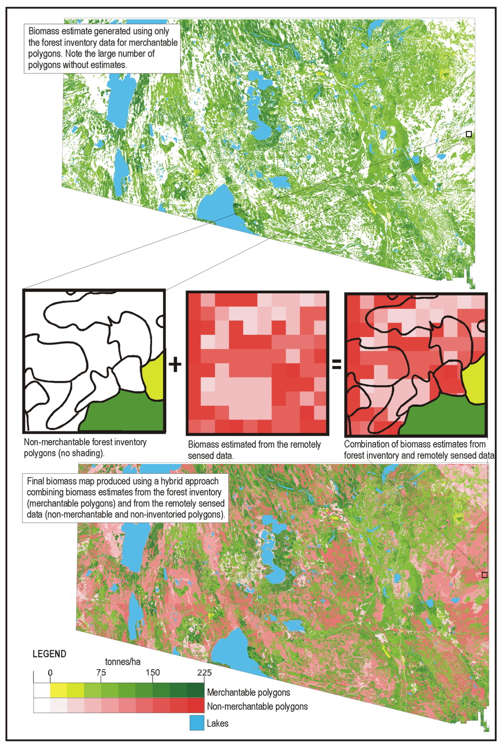 Sensors Free FullText Spatially Explicit Large Area Biomass - Us forest biomass map