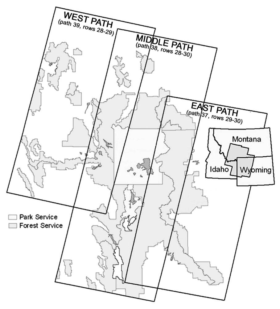 montana state university thesis