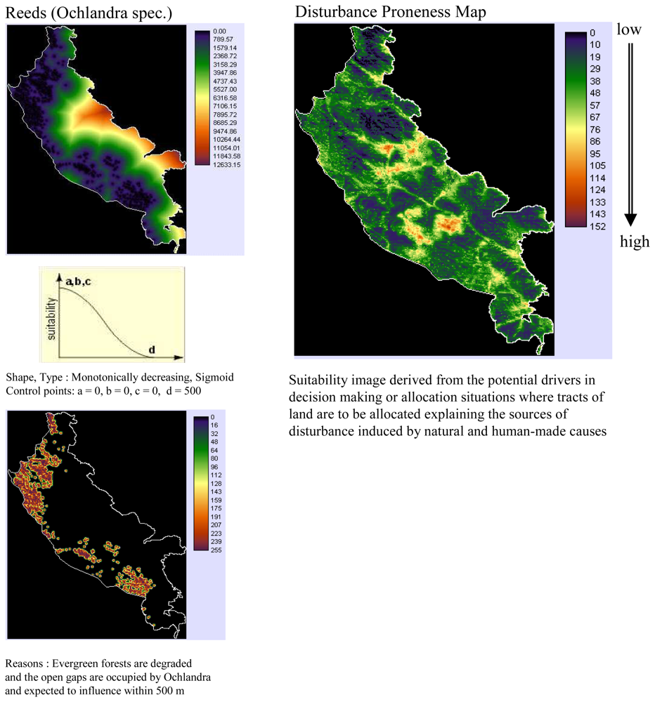 An analysis of the rainforest as one of the earths most valuable natural resources