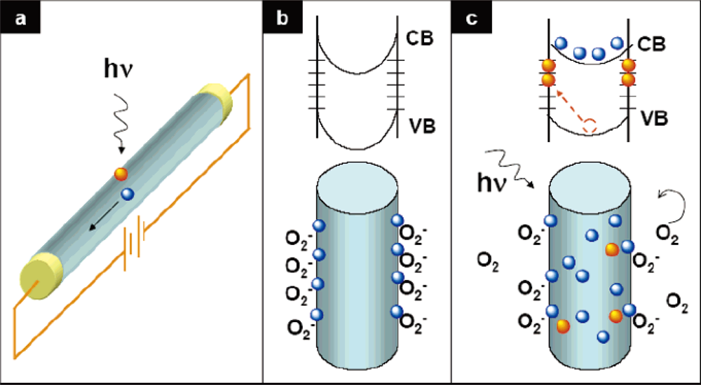 iron nanowires oxide thesis A surfactant- and template-free approach is described for the synthesis of  mesoporous α-fe2o3, fe3o4 and α-fe nanowires (nws) in this approach, α- feooh.