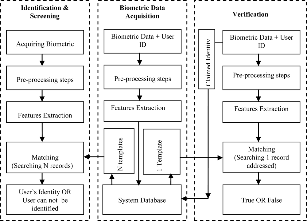 biometric fingerprint thesis