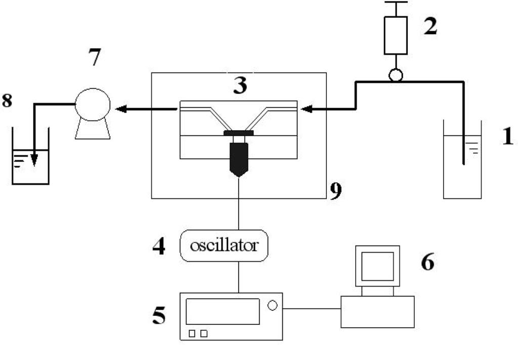 Sensors   Free Full-Text   Detection of Cartilage Oligomeric ...