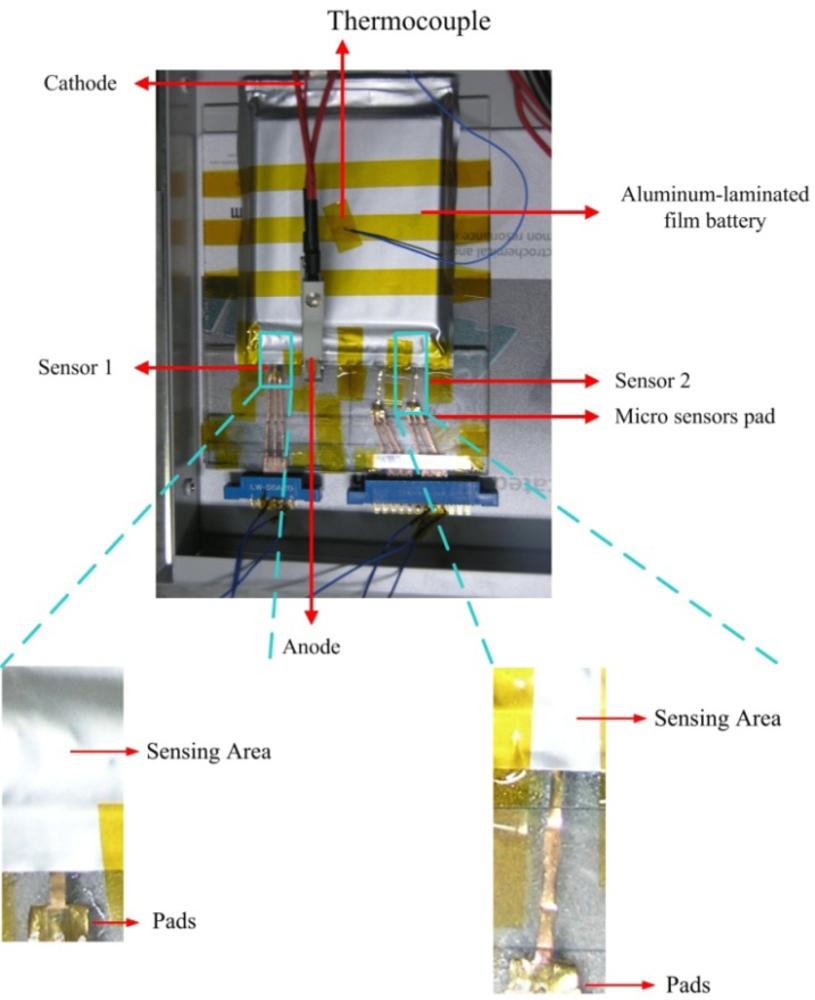 Sensors Free Full Text In Situ Monitoring Of