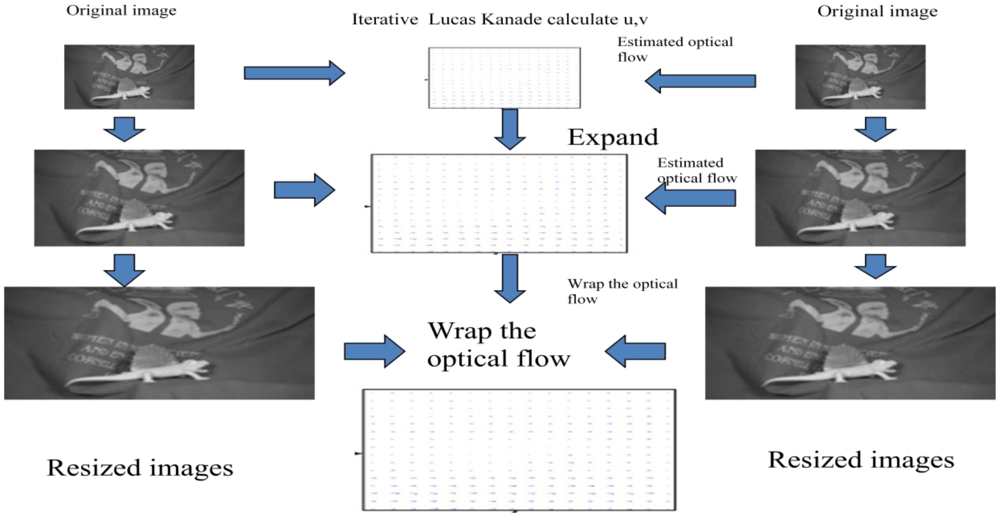 thesis on optical flow