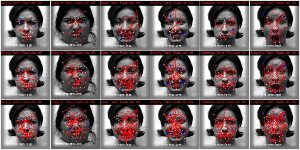 Thesis on real time face recognition