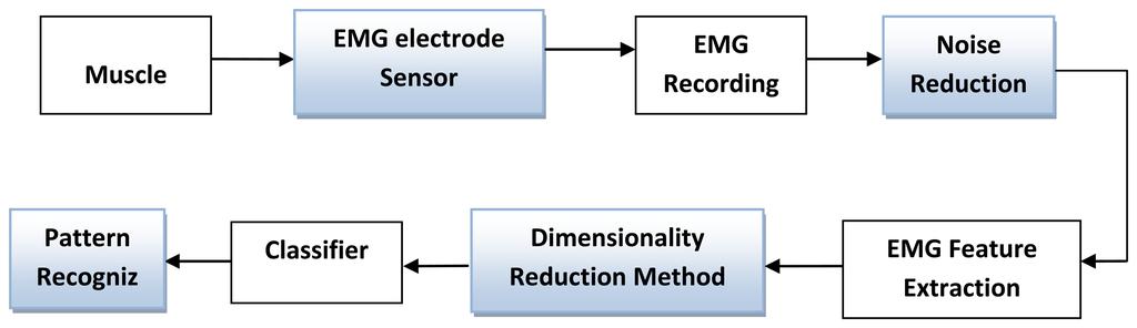 sensors free full text surface electromyography signal rh mdpi com NCV Diagram emg block diagram explanation
