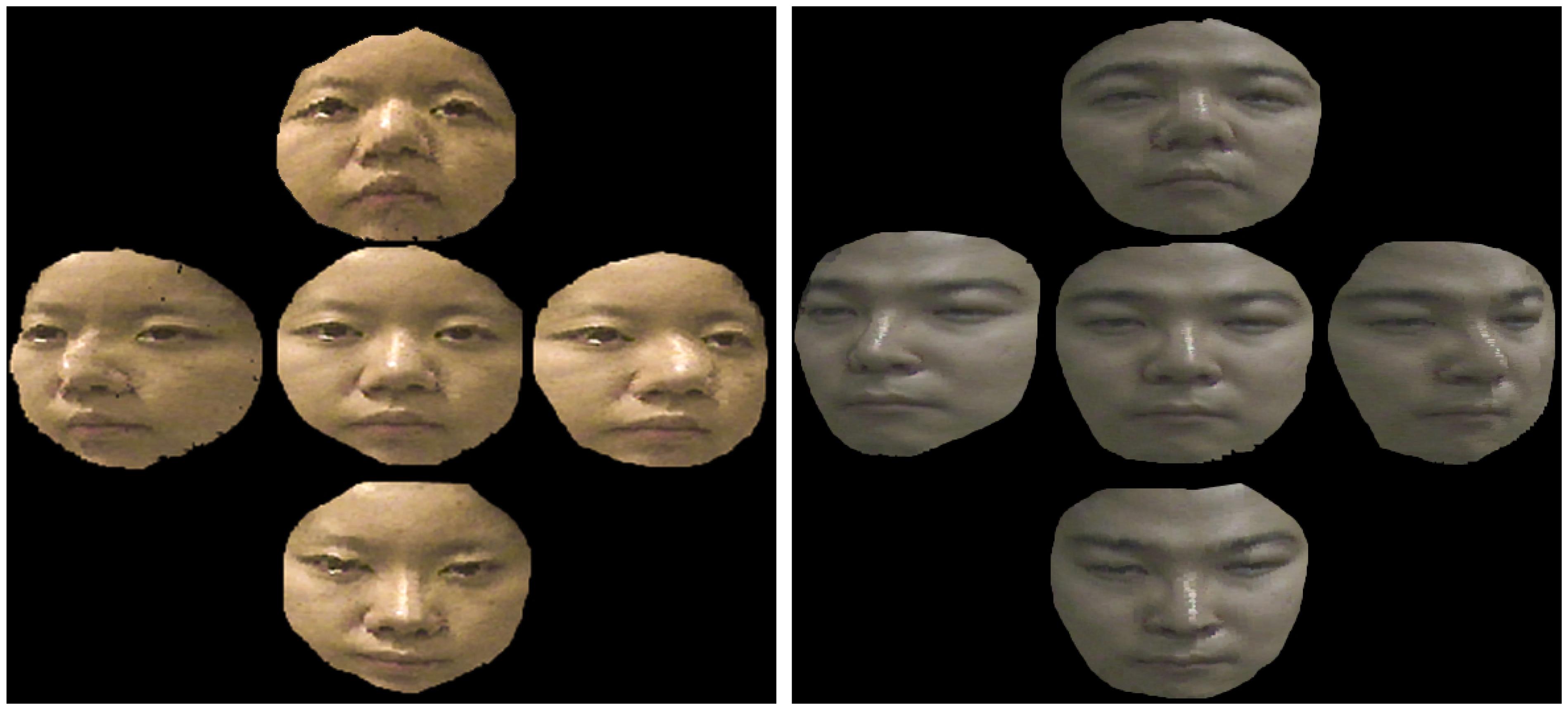 Sensors | Free Full-Text | Random-Profiles-Based 3D Face Recognition