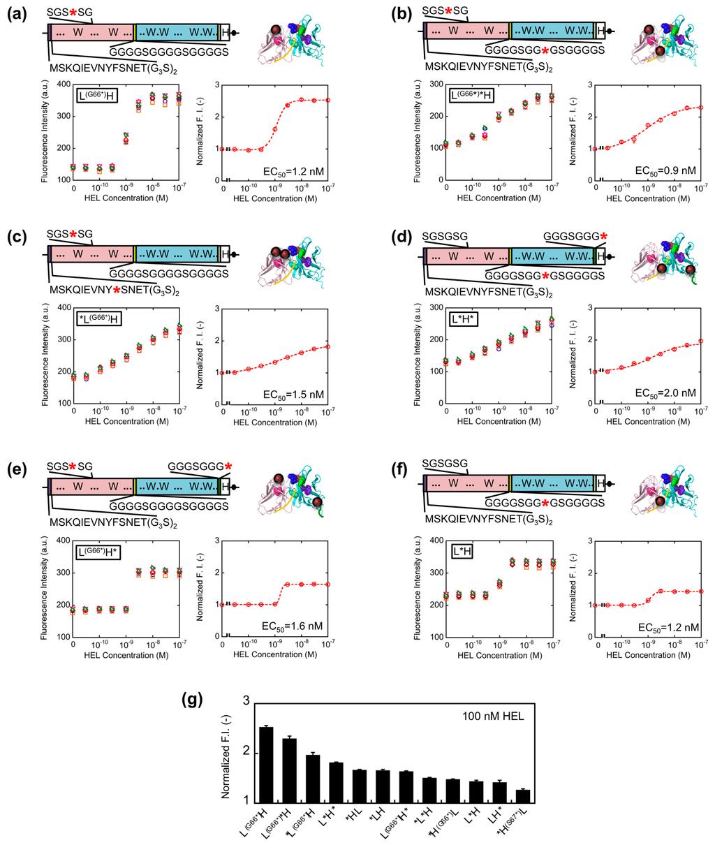molecular biology made simple and fun pdf download