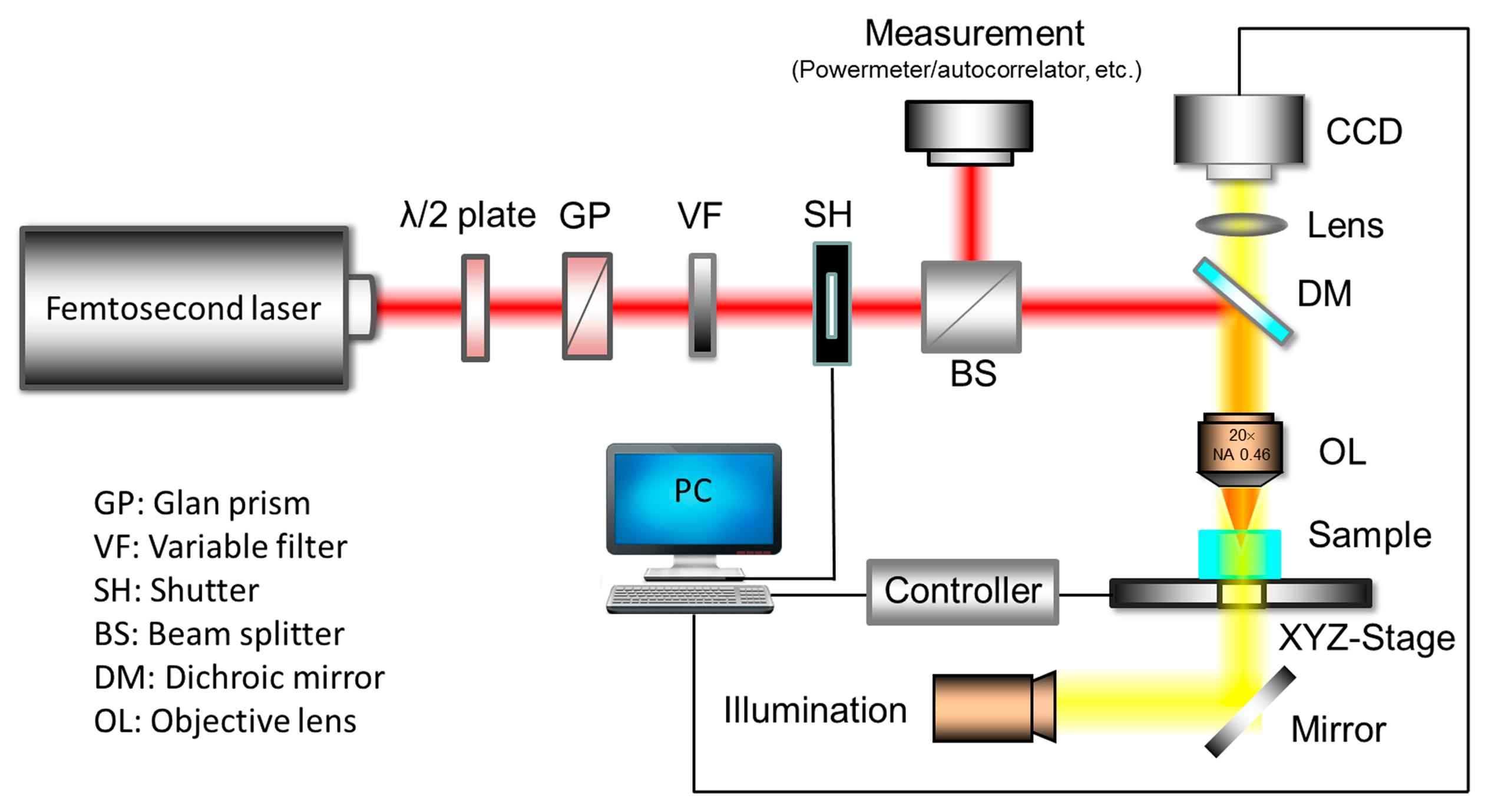 Sensors Free Full Text Femtosecond Laser Fabrication