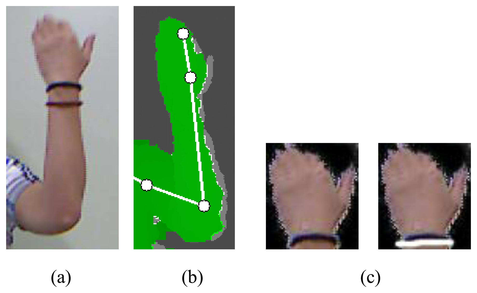 Sensors   Free Full-Text   Sign Language Recognition with