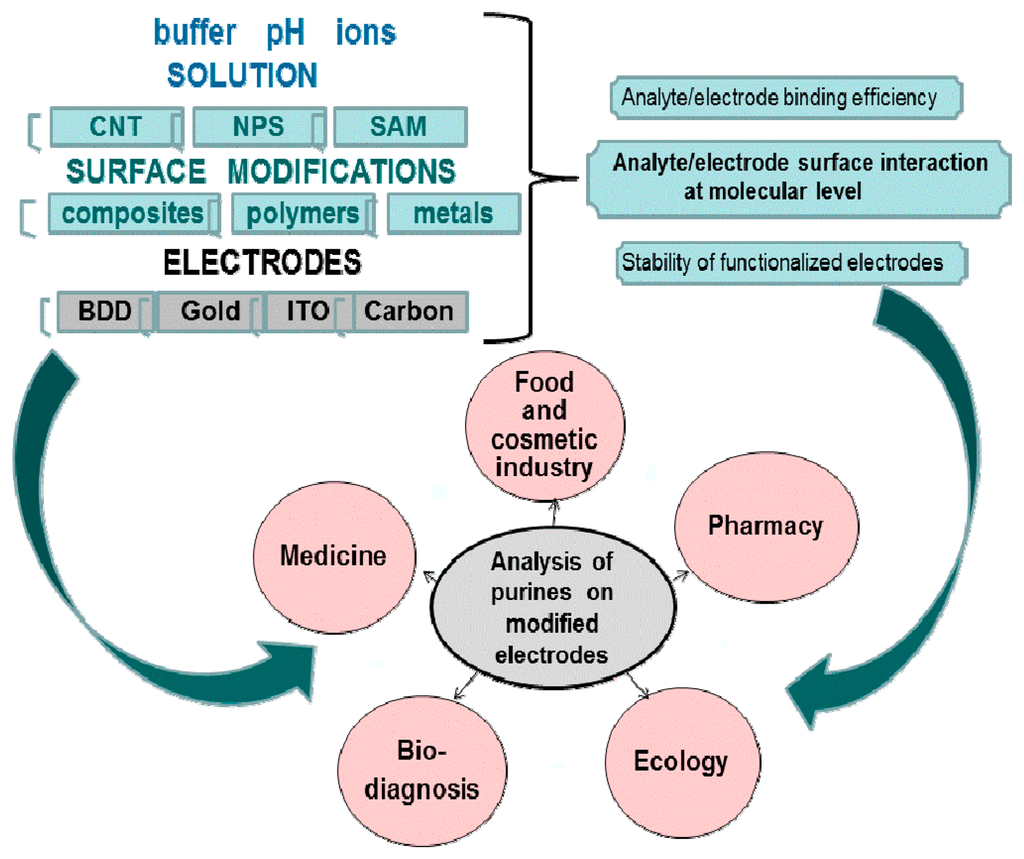 lectrochemical sensors biosensors and their biomedical applications