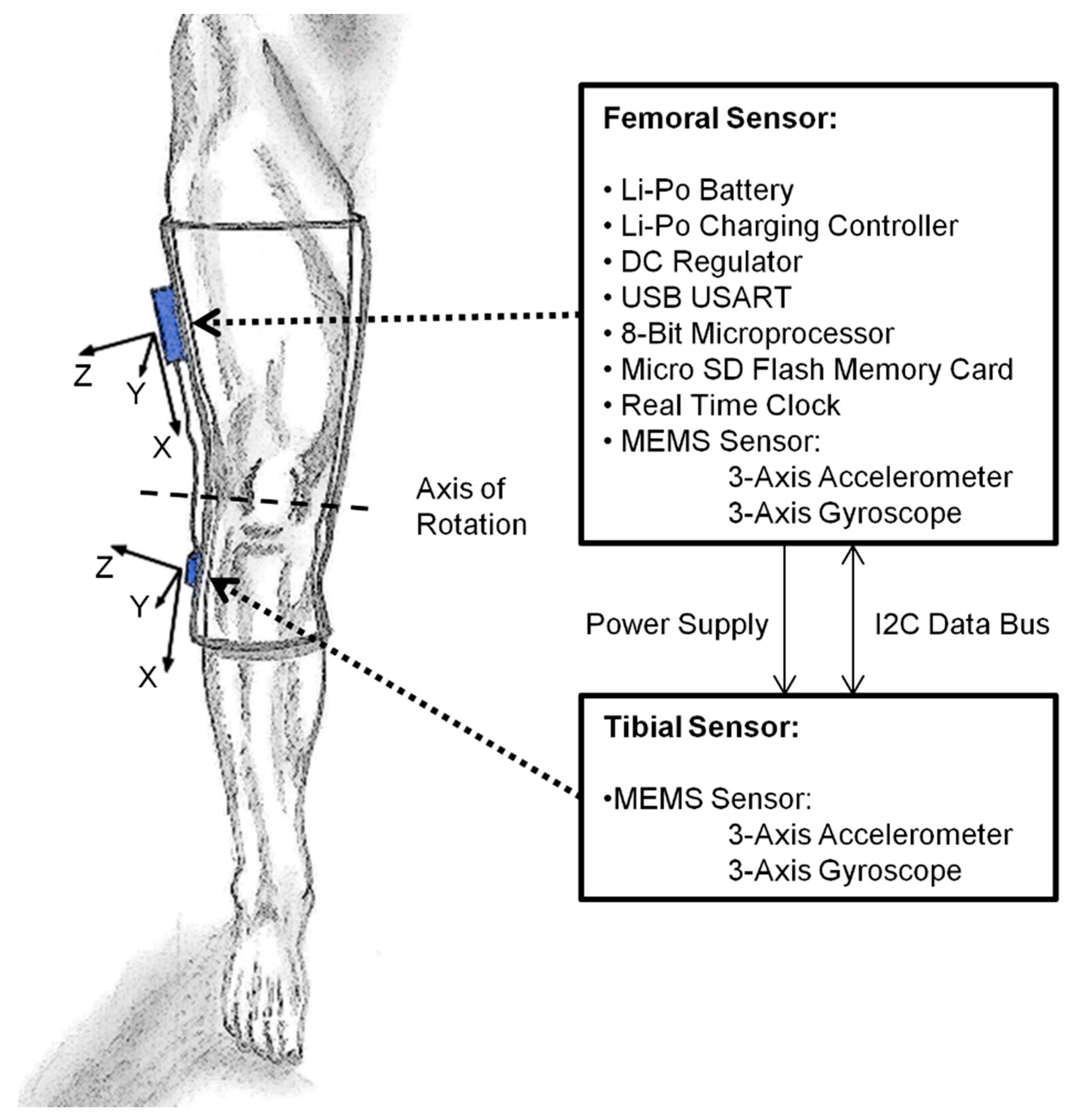 Sensors | Free Full-Text | Accuracy of a Custom Physical Activity ...