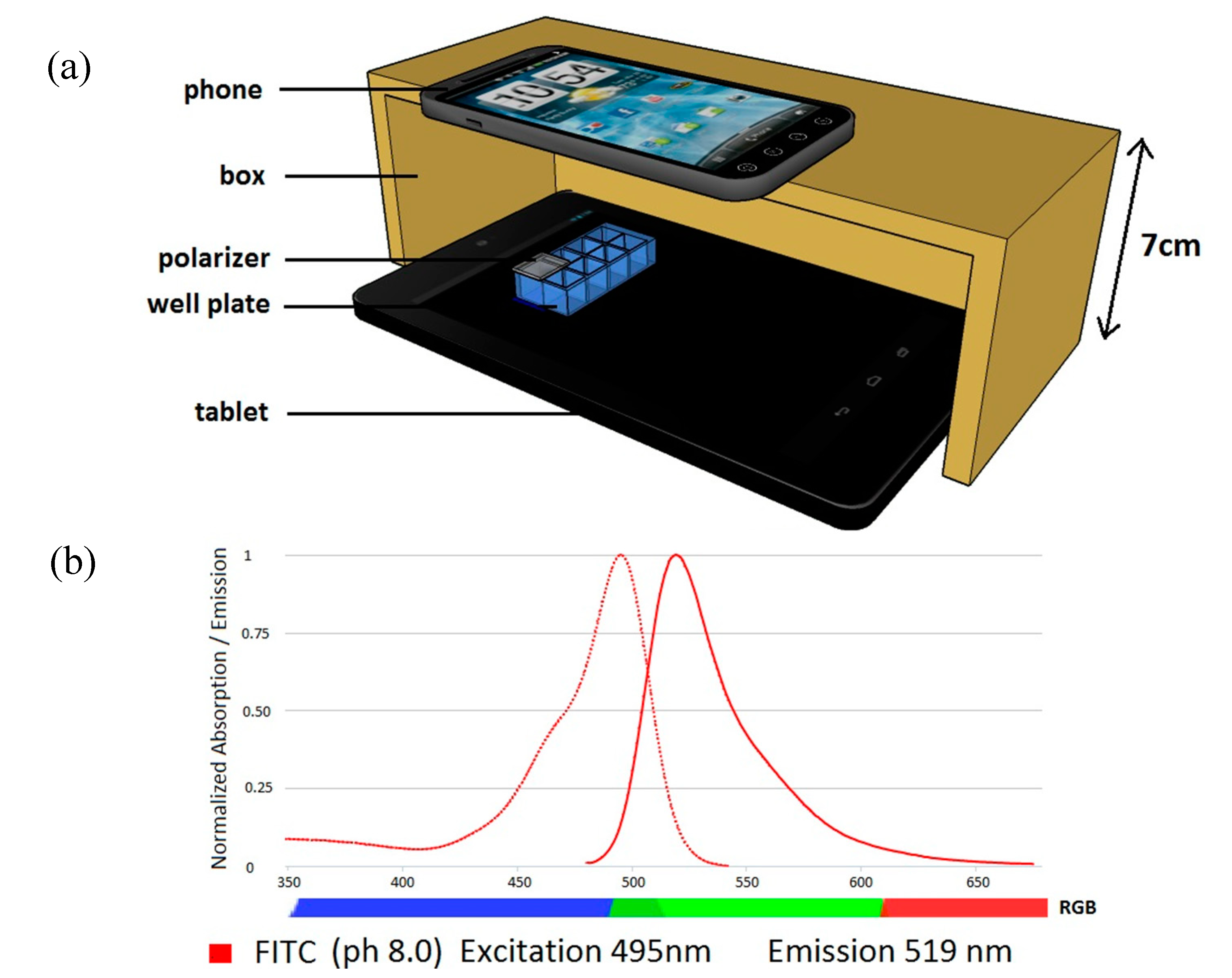 Sensors Free Full Text Medically Relevant Assays With A Simple Nexus 4 Circuit Diagram 15 11653 G001 1024