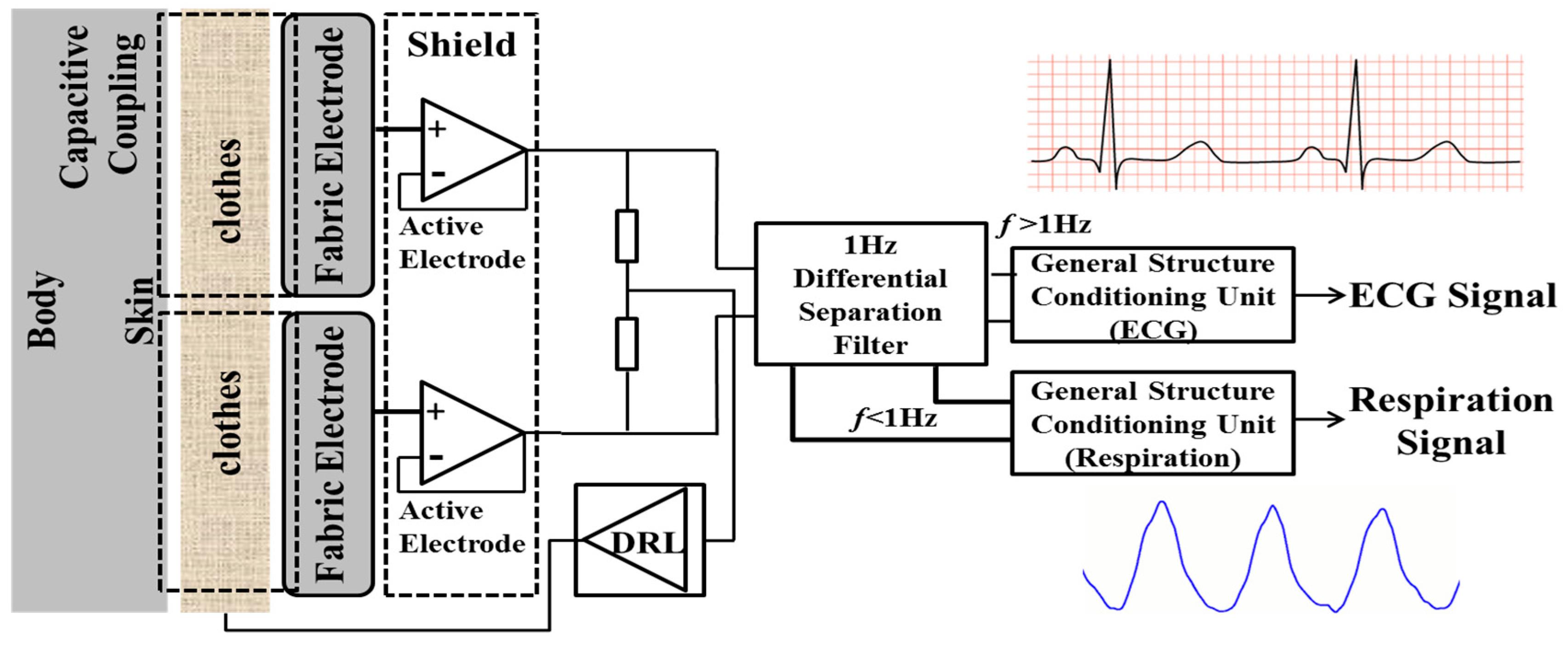 Sensors free full text an efficient biometric based algorithm no ccuart Choice Image