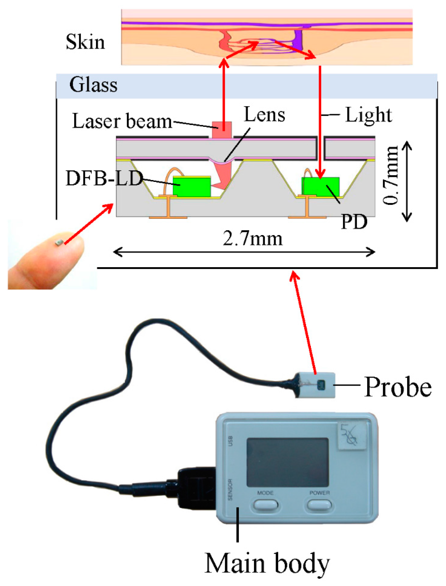Sensors Free Full Text Detection Of Site Specific