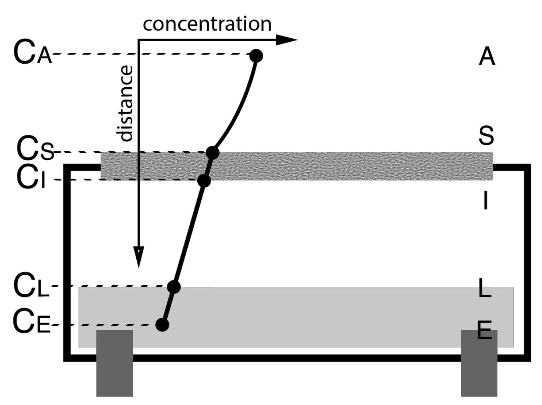 Sensors | Free Full-Text | Quantification Method for
