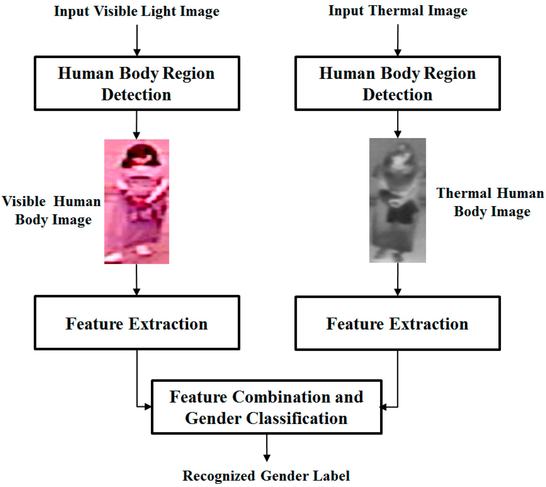 Sensors | Free Full-Text | Body-Based Gender Recognition Using