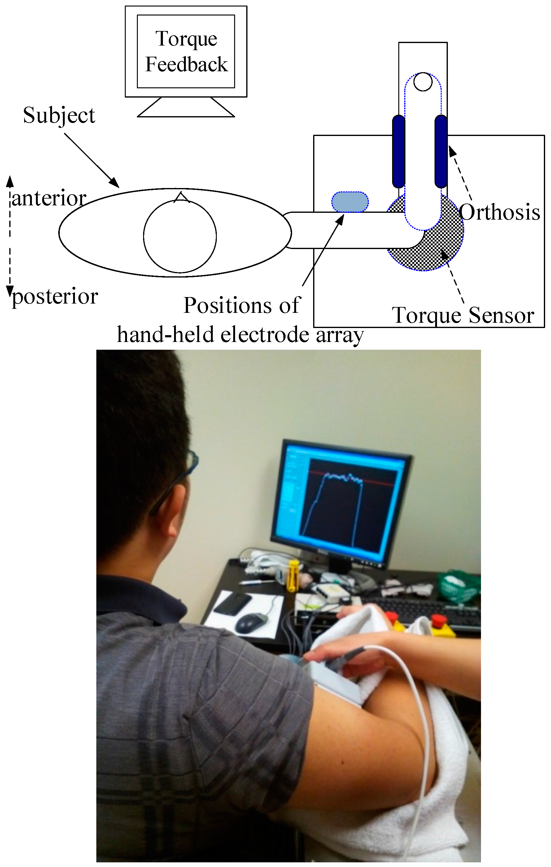 Sensors | Free Full-Text | Localized Electrical Impedance