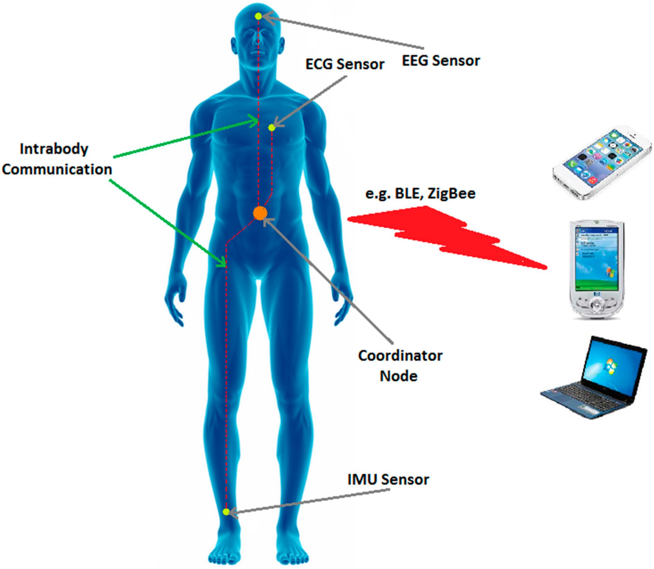 Sensors Free Full Text A Survey On Wireless Body Area