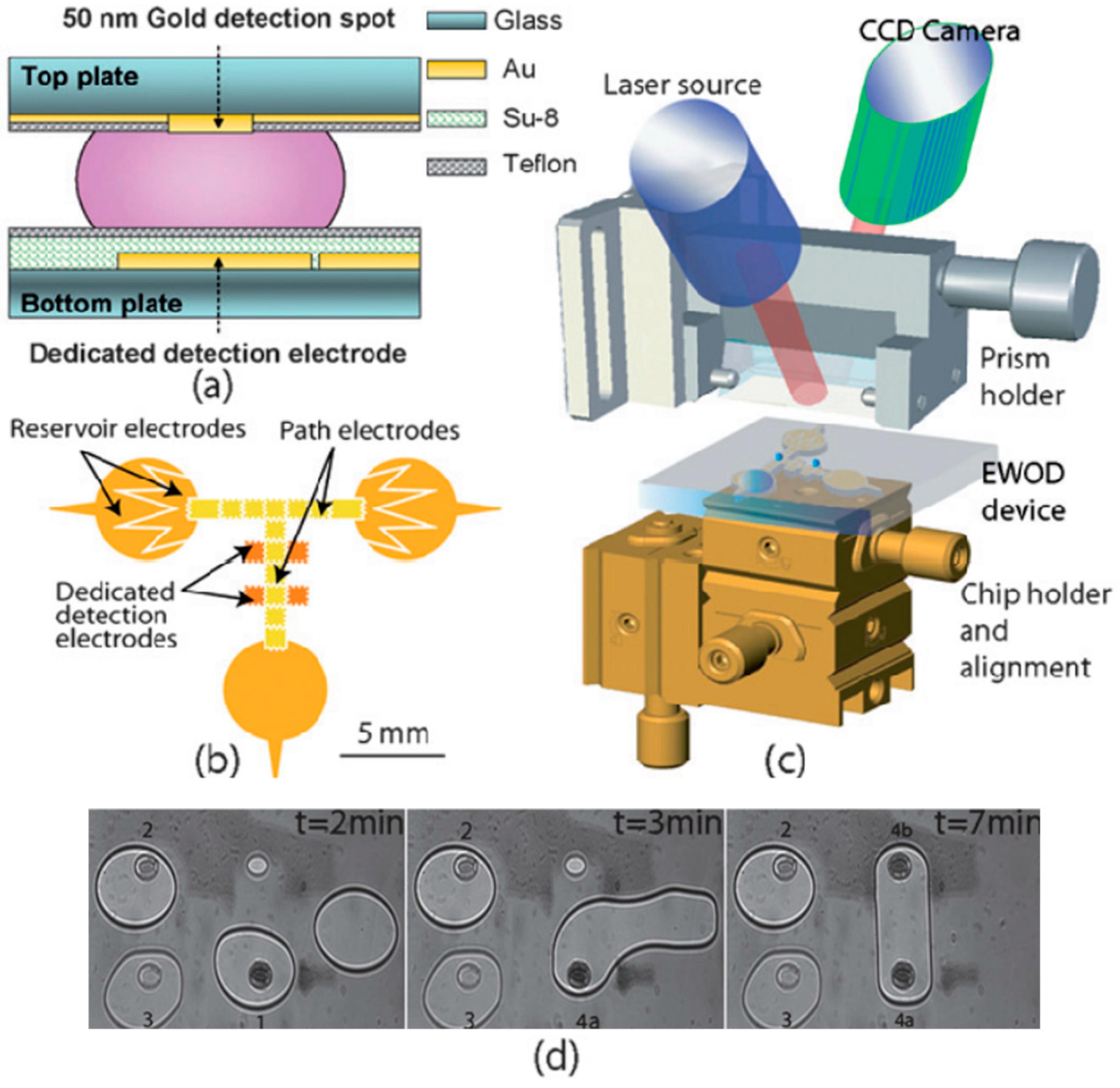 Sensors Free Full Text Microfluidic Surface Plasmon Resonance Gold Detector Schematic Diagram No
