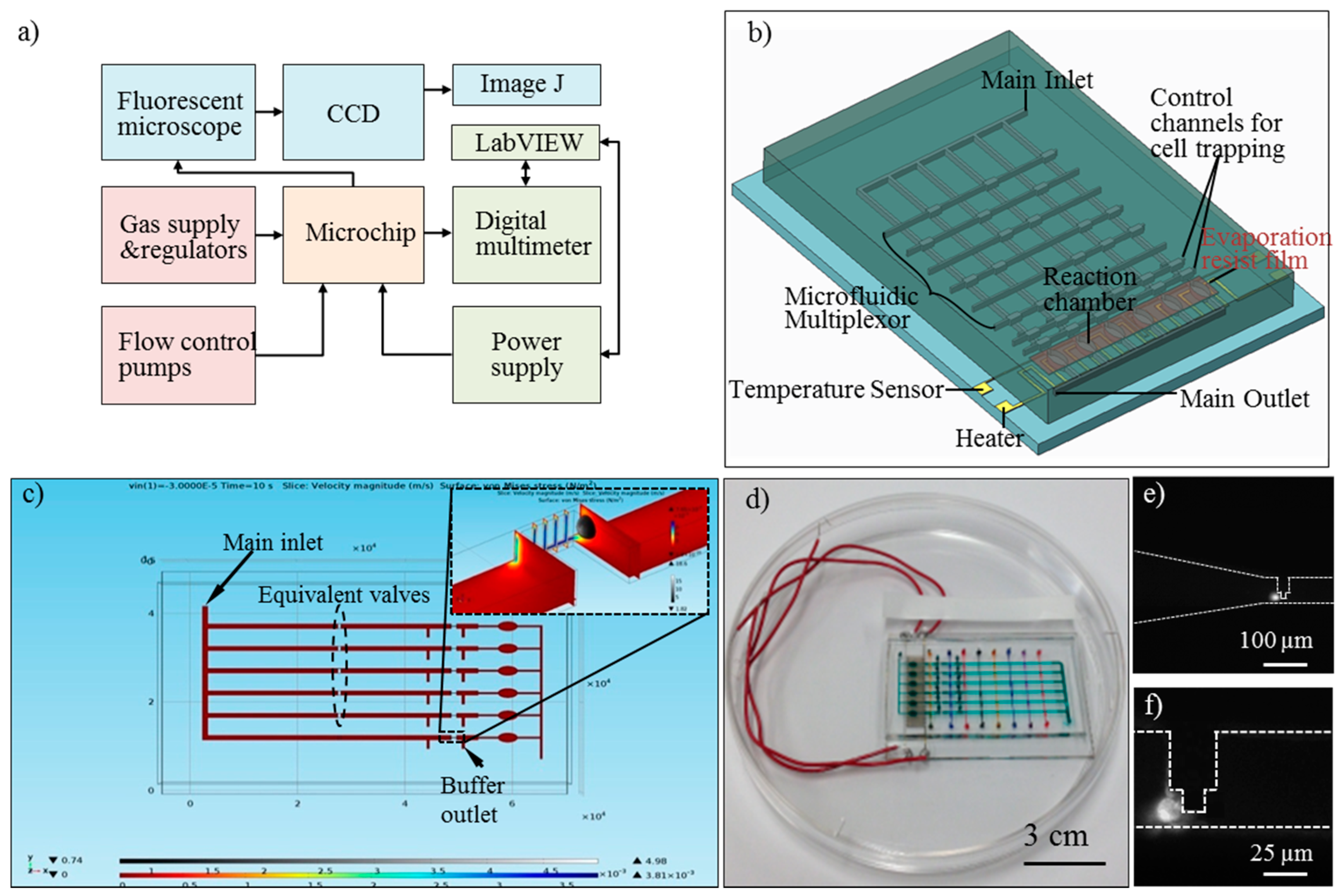 Sensors | Free Full-Text | A Microchip for Integrated Single-Cell ...