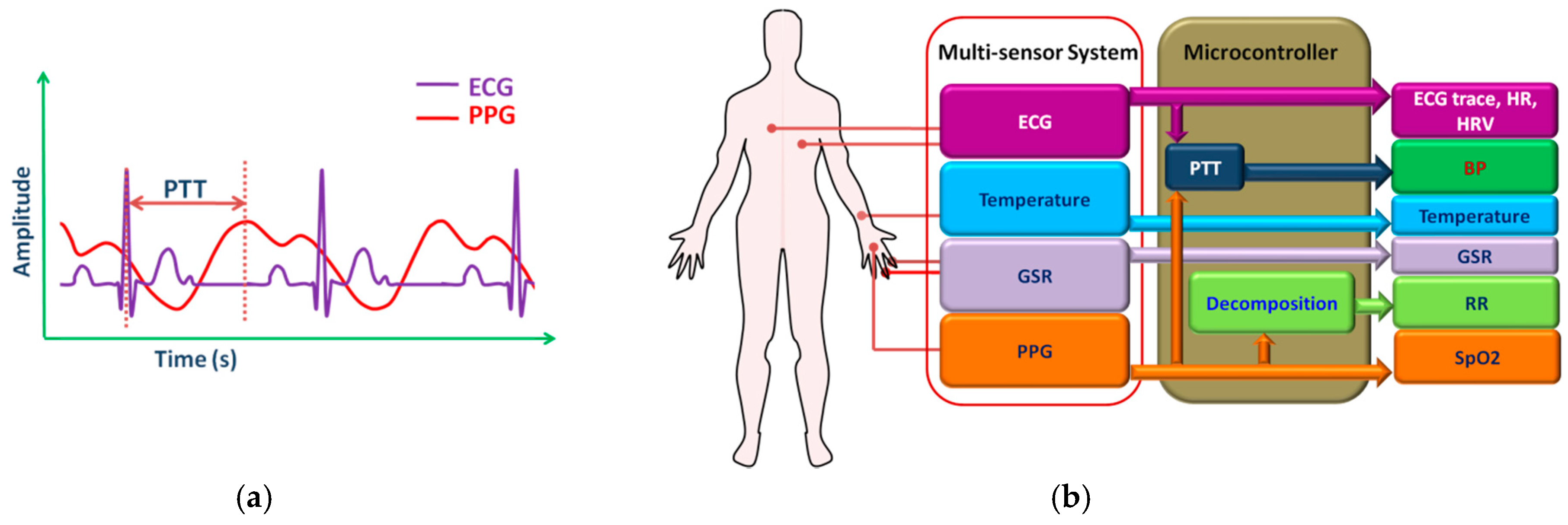 Sensors | Free Full-Text | Wearable Sensors for Remote Health