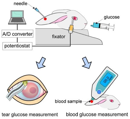 Sensors Special Issue Glucose Sensors Revolution In