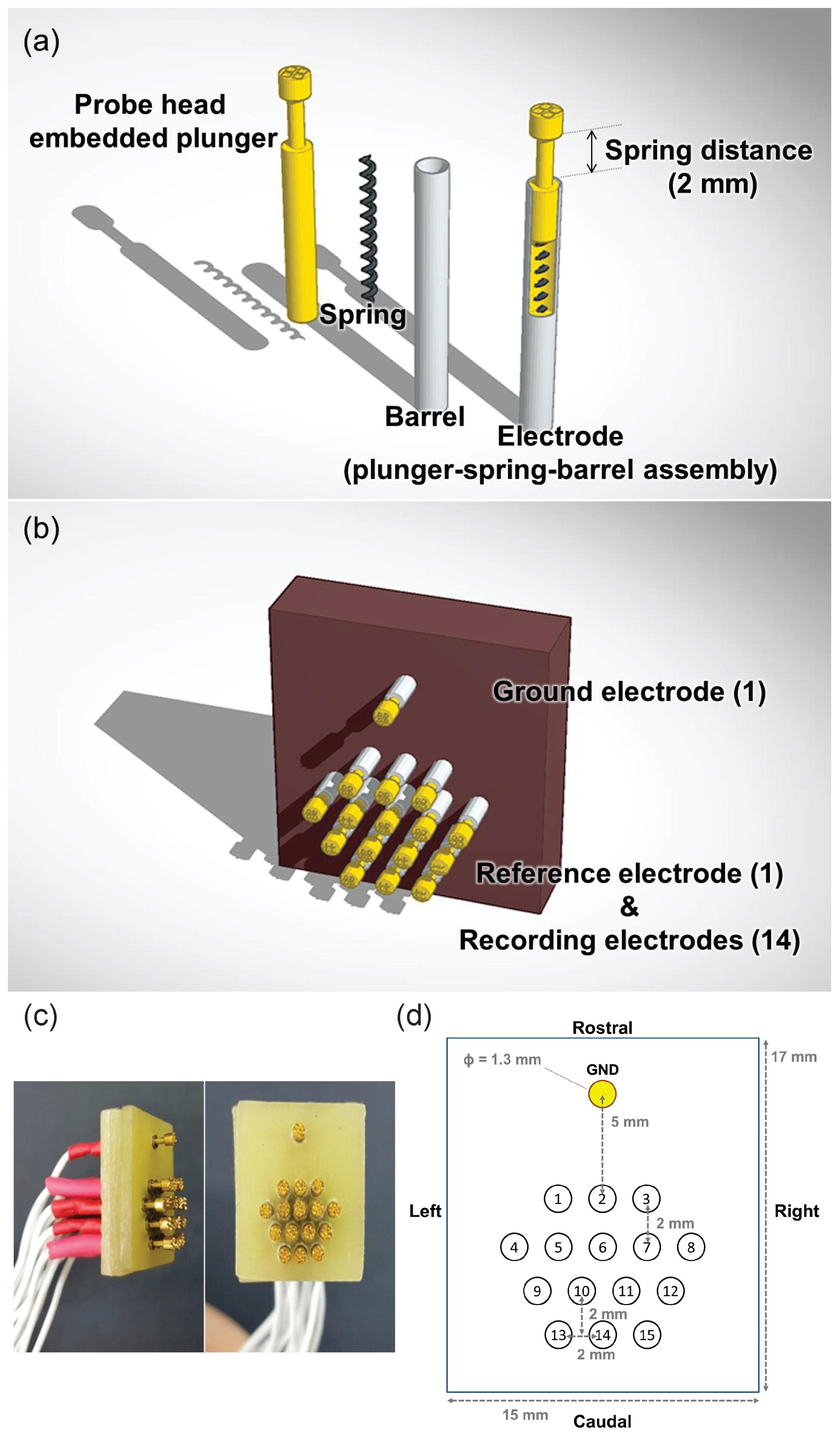 Wireless Mouse Schematic - Wiring Diagram Schemas