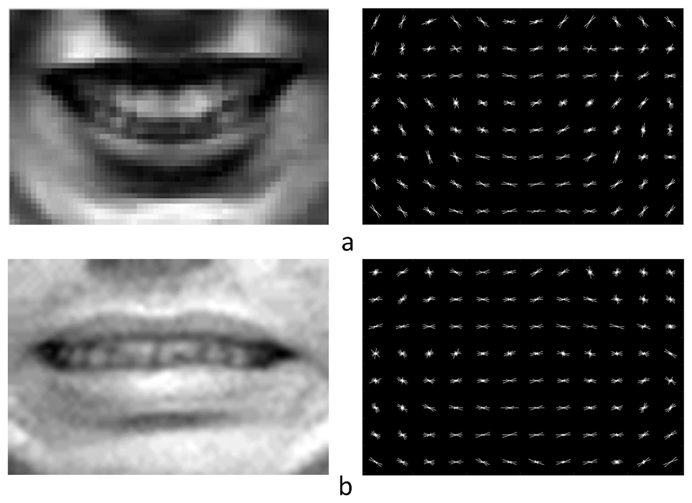 Sensors   Free Full-Text   Facial Expression Recognition