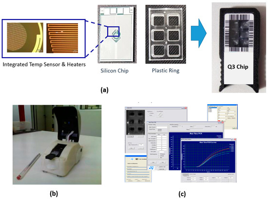 Miniaturized Real-Time PCR on a Q3 System for Rapid KRAS Genotyping