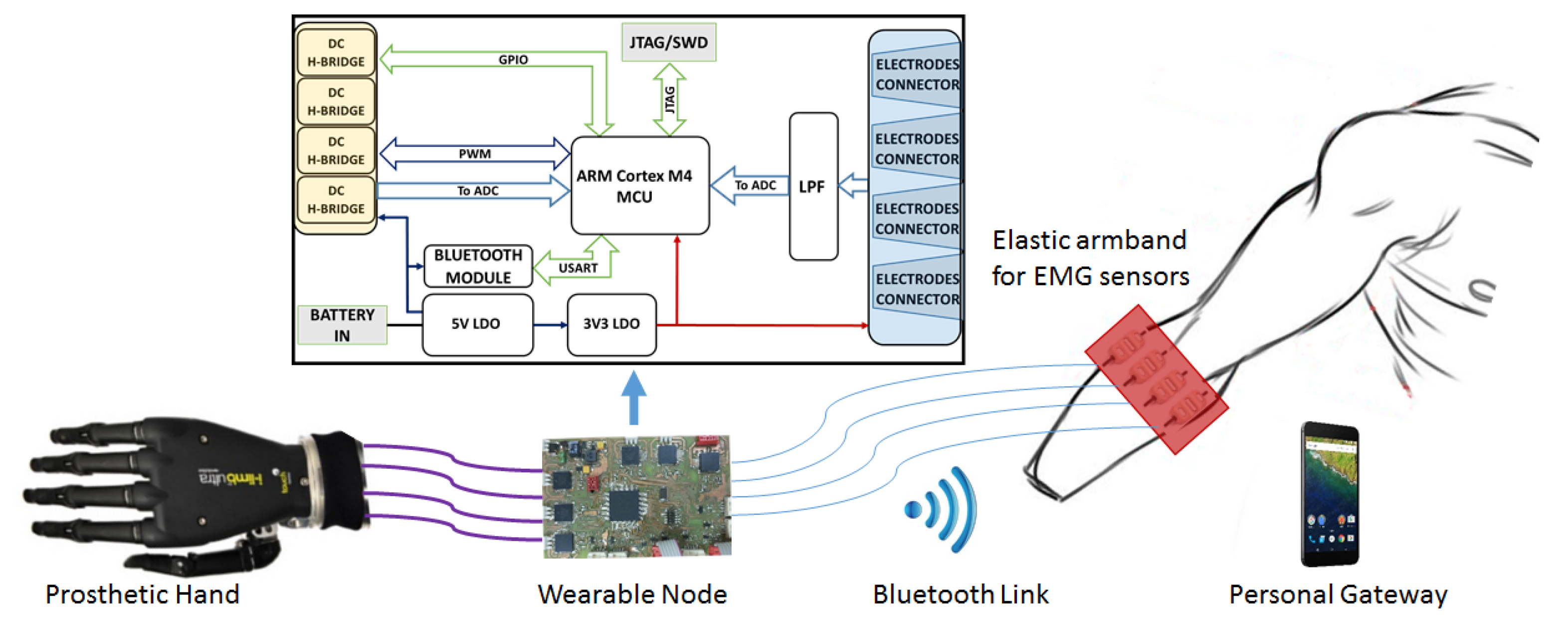 Sensors Free Full Text A Prosthetic Hand Body Area Controller Emg Wiring Diagram Browse All Of The Electrical No