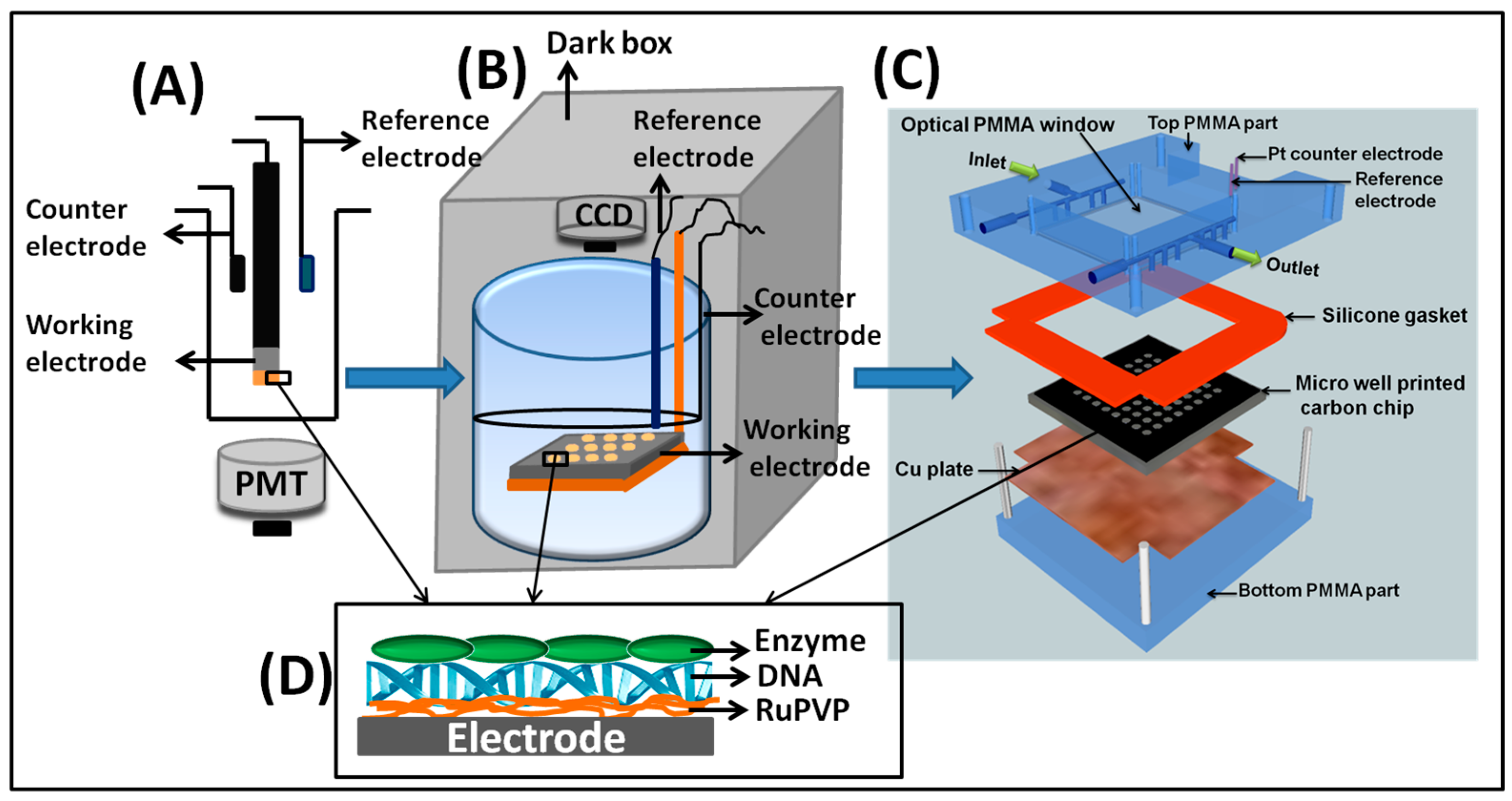 Sensors   Free Full-Text   Screening Genotoxicity Chemistry with ...