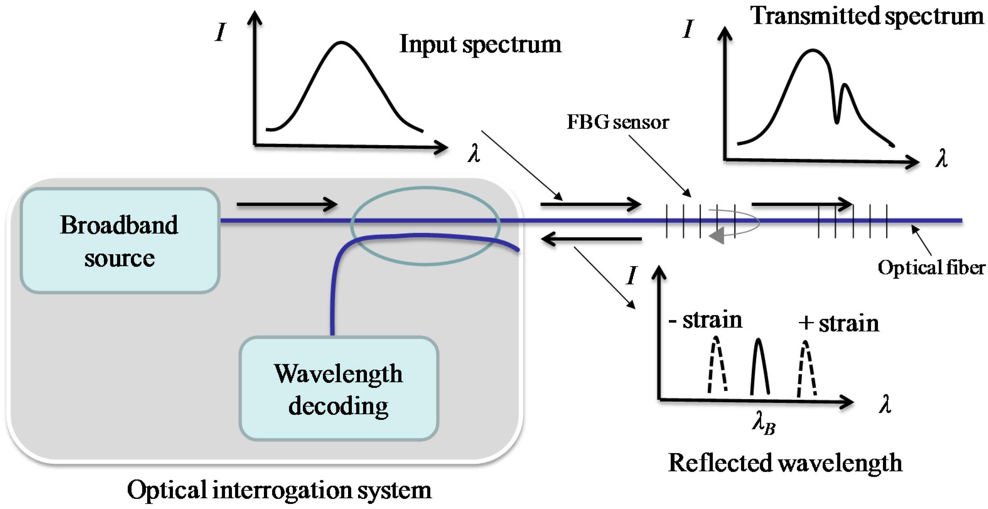 fbg sensing thesis